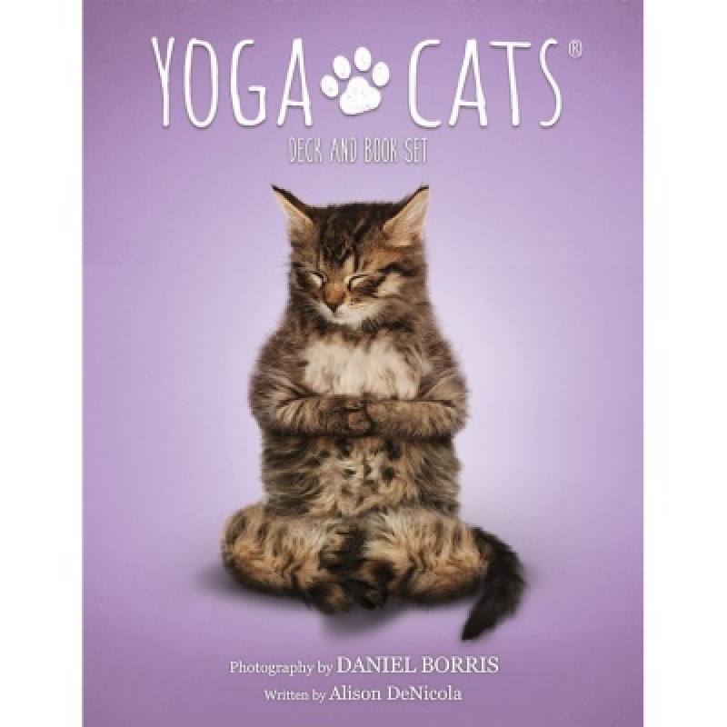 Карты Таро Yoga Cats Challenges cards/Таро Йоги кошек